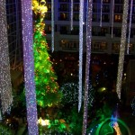 'Twas the Night Before Christmas in ICE! at the Gaylord National