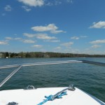 From the Bow of a Boat: Tree Frogs, Fish Tacos and Samplings of Summer