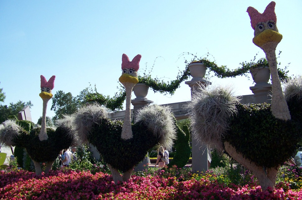 Ostriches in topiary form.