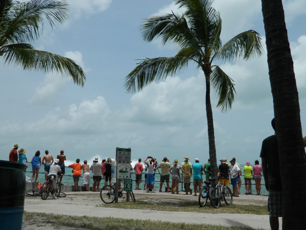 Spectators watching the power boat races on Marathon Key.