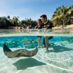Discount for Florida residents at Discovery Cove