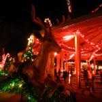 Very Vintage, Virginia:  Christmas Town at Busch Gardens Williamsburg