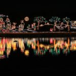 Fort Lauderdale Water Taxi offers Holiday Lights Tour for 2016 Christmas season